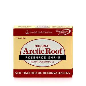 Arctic root (rosenrod)