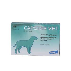 Capstar Vet (til store hunde)