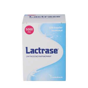 Lactrase kapsler (100 stk)